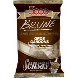 3000 Brune Gros Gardon